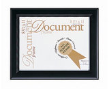 Step Document Frame